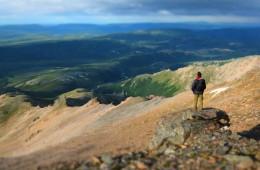 IS Promítání – Leto na Aljaške